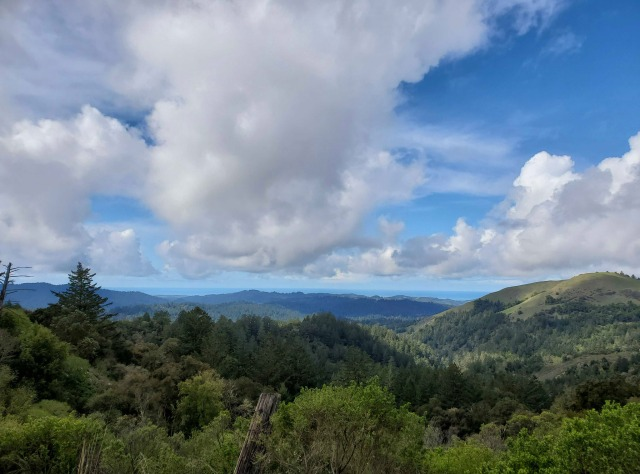 Photo of the western side of the Santa Cruz Mountains down to the Pacific Ocean.