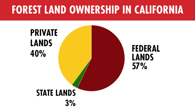 Chart showing forest land ownership in California with Federal at 57%, Private at 40% and State at 3%