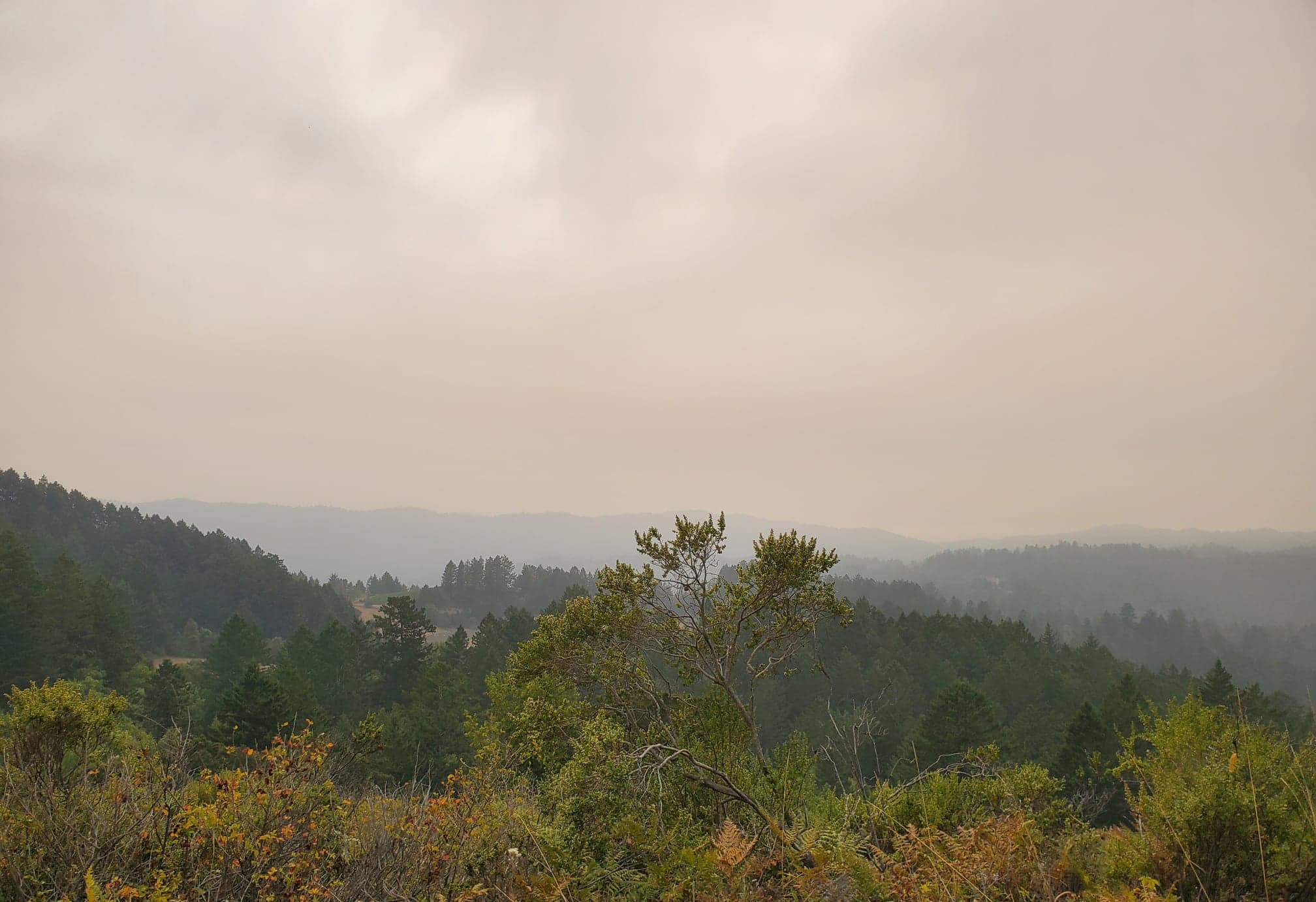 smoke over the foothills of the Santa Cruz Mountains